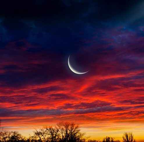 New Moon Update 7-31-19 - The Power Path