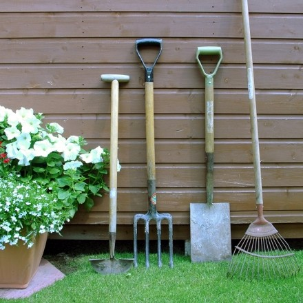 garden tools against shed